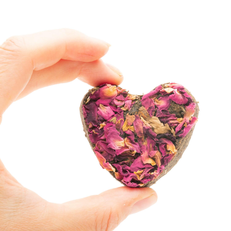 petits coeurs à la rose pour herbivores
