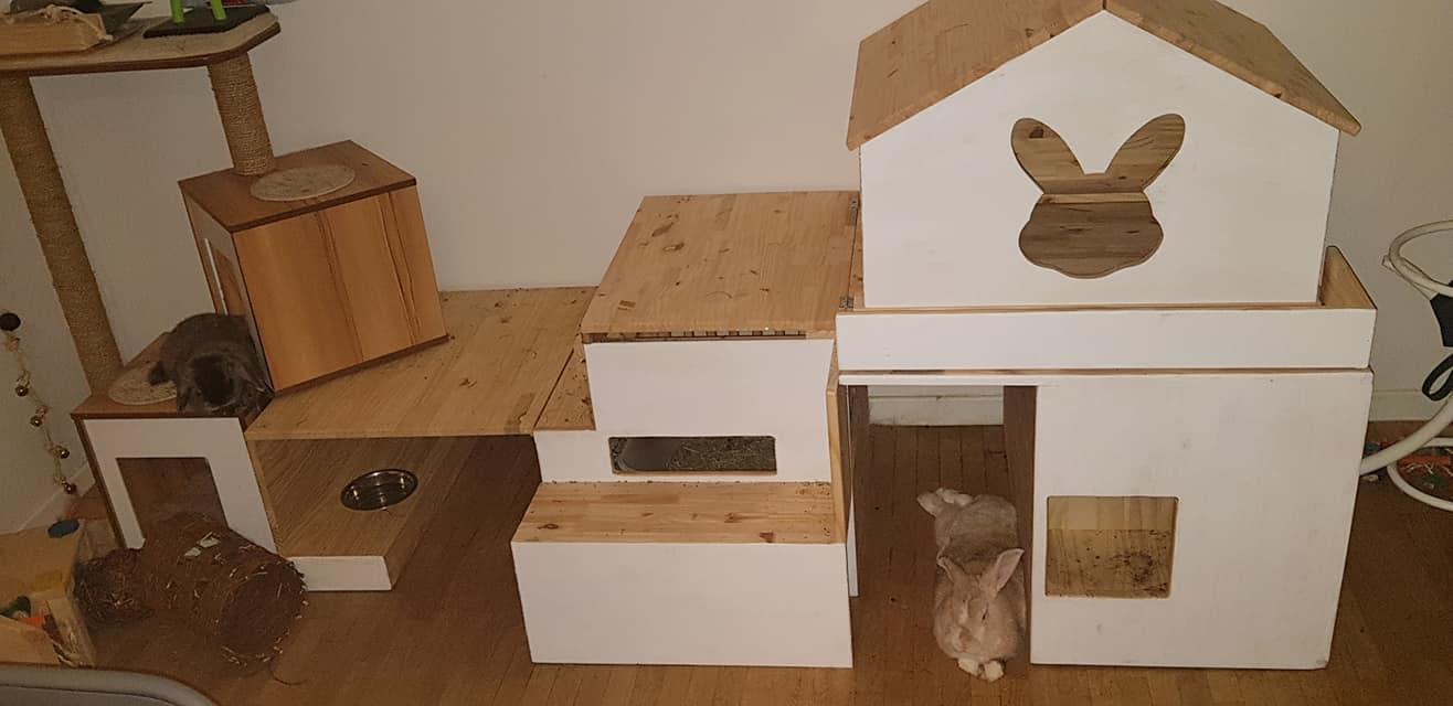 Arbre à chat, coin litière, maisonnette et bac à terre.