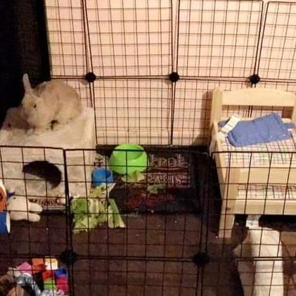 Enclos avec petit lit, cabane, jouets...
