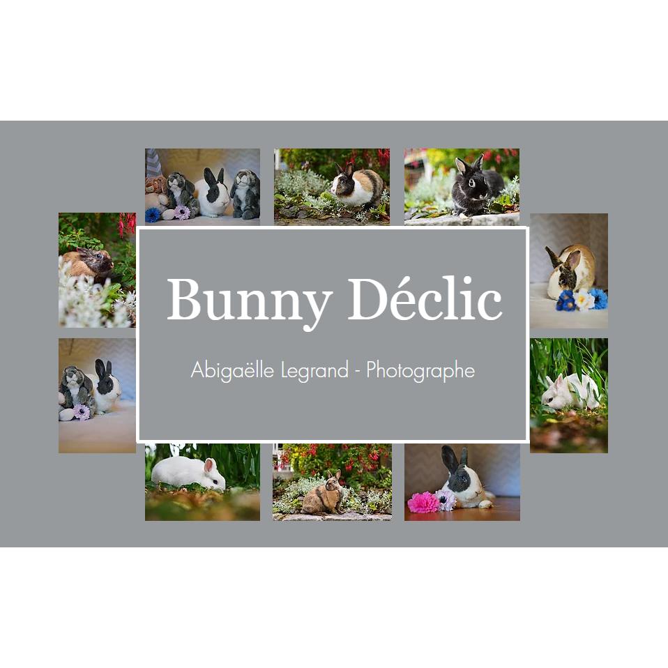 Bunny Déclic - Abigaëlle Legrand photographe