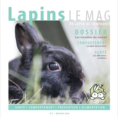 Lapins Le Mag