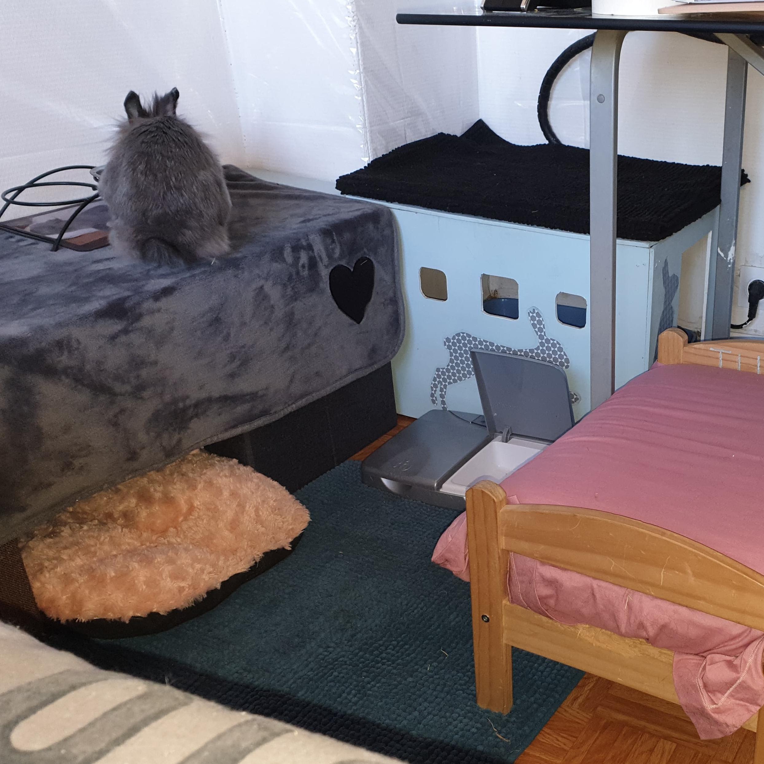 Espace avec lit