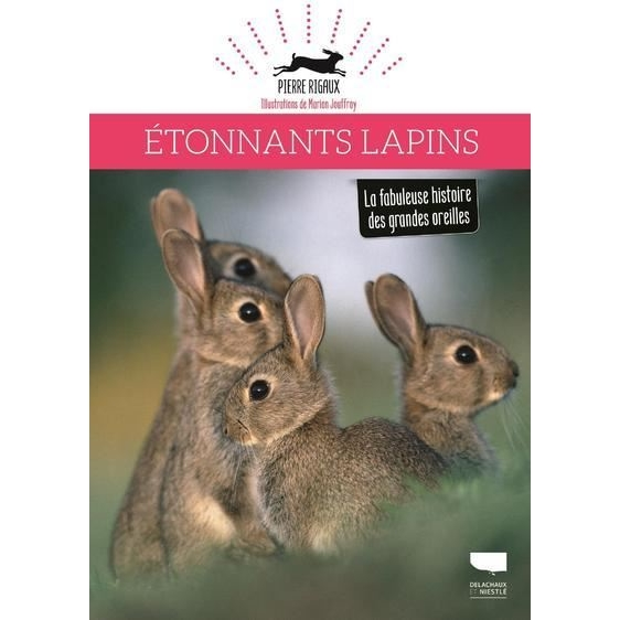 Étonnants lapins - La fabuleuse histoire des grandes oreilles