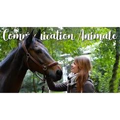 Communication animale : De septique à convaincue