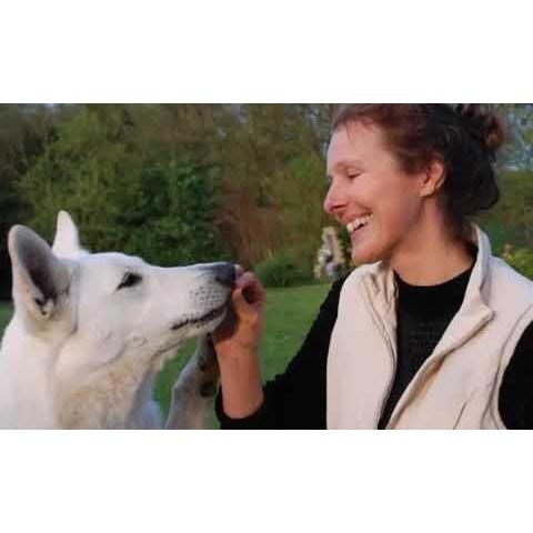 Vétérinaires et Communication Intuitive